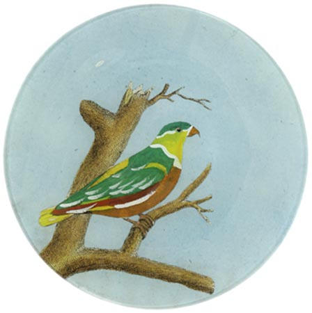 $95.00 # 3 Lory (Green) Plate