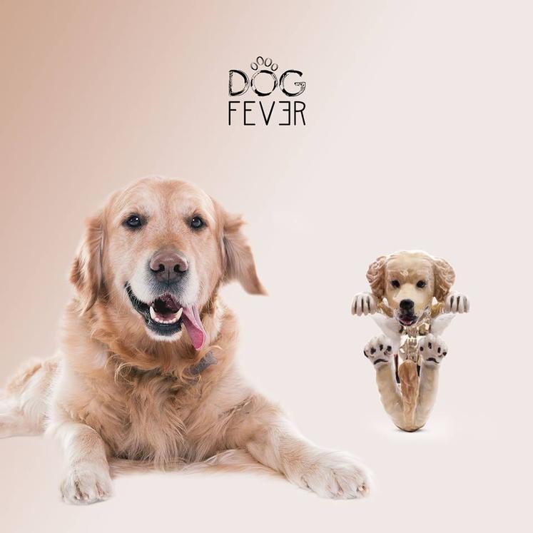 Dog Fever logo