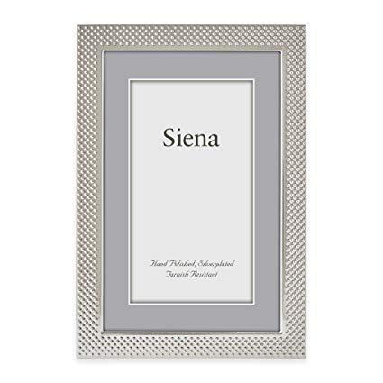$18.00 4x6 Mesh Silverplate Frame TIZ-898