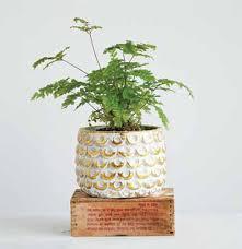 $16.95 Gold & White Cement Pot