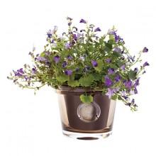 $50.00 RHS-Small Topaz Flower Pot