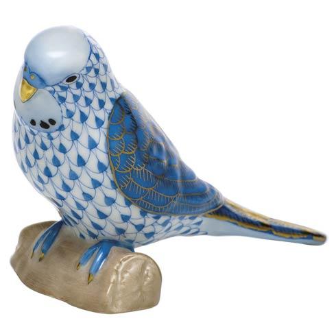 $375.00 Parakeet - Blue