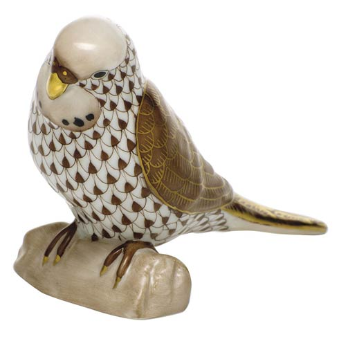 $375.00 Parakeet - Chocolate