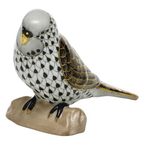 $375.00 Parakeet - Black