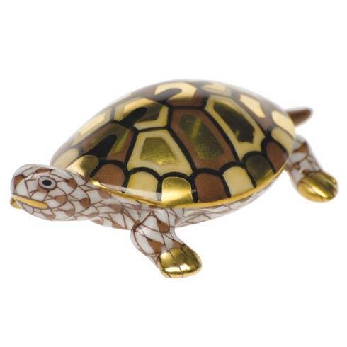$275.00 Baby Turtle