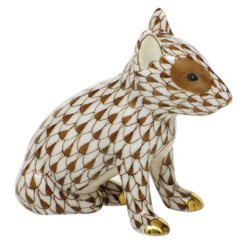$275.00 English Bull Terrier Puppy-Chocolate