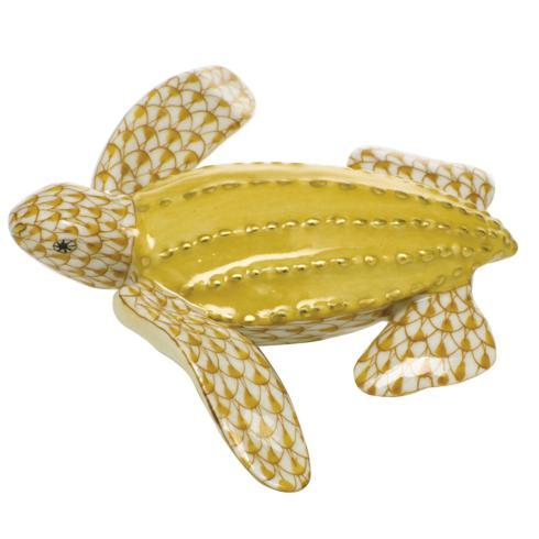 $350.00 Young Leatherback Turtle - Butterscotch