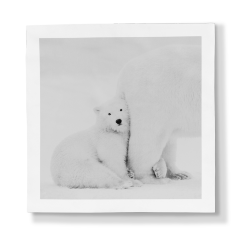 $897.00 Porcelain Panel - Mummy I Love You