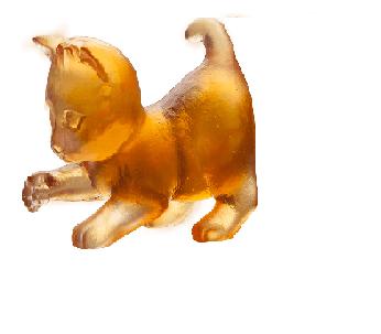 $195.00 Amber player mini kitten