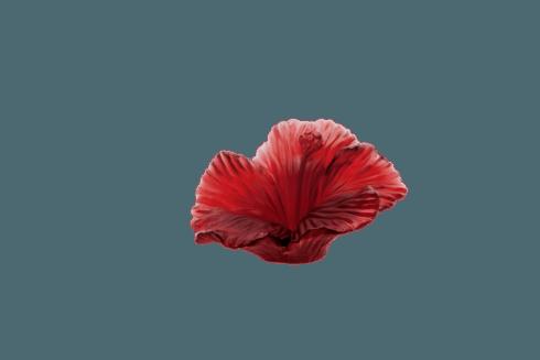 $395.00 Hibiscus flower