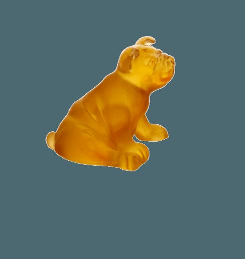 $185.00 Amber mini puppy