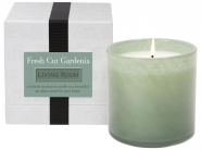 $60.00 Living Room/Fresh Cut Gardenia Candle
