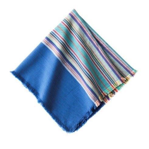 $15.00 Picnic Stripe Napkin