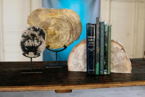 $164.00 PETRIFIED WOODEN BOOKENDS