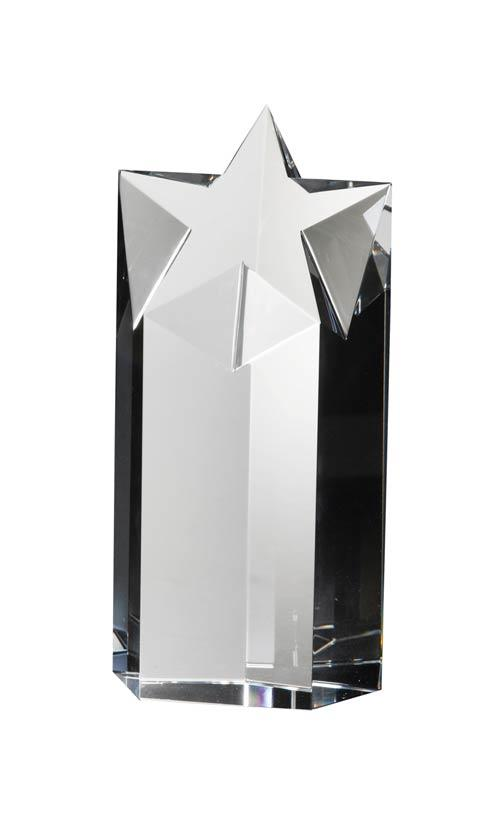 $145.00 Small Award