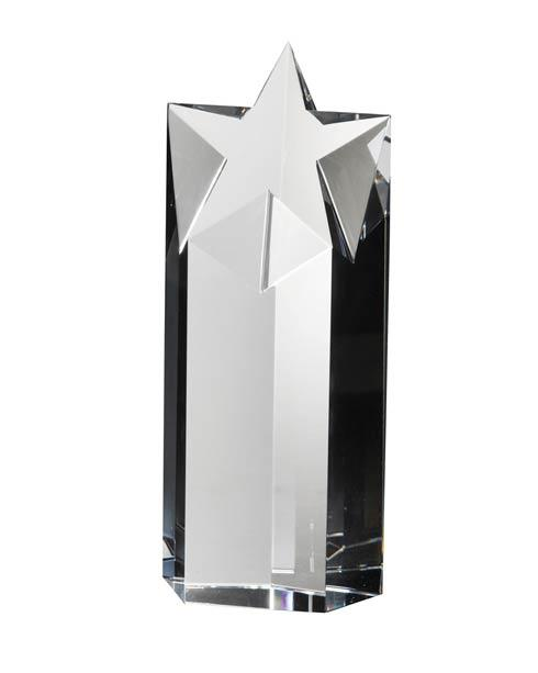 $185.00 Award (medium)