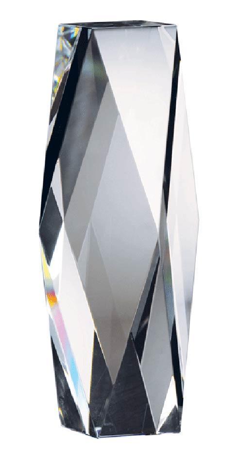$155.00 Award (large)