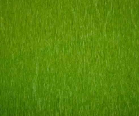 $21.00 Bistro Green - Set of 12
