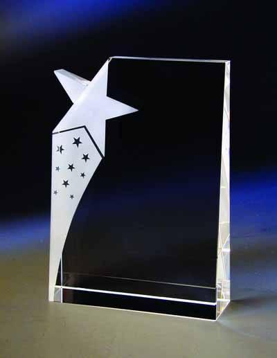 $141.00 Star award
