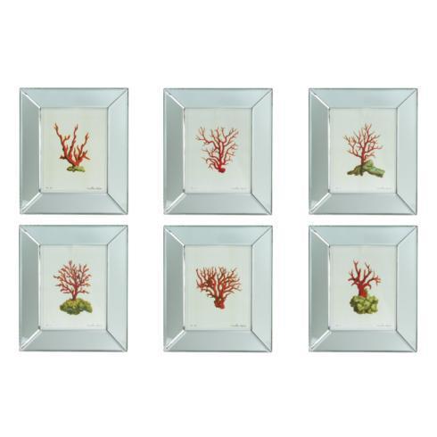 $125.00 Mirror Framed Coral Print